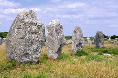 Standing stones at Carnac in France Royalty Free Stock Images