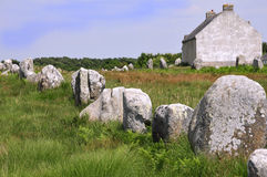 Standing stones at Carnac in France Royalty Free Stock Photography