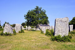 Standing stones at Erdeven in France Stock Photos