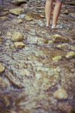 Standing in stream. Woman standing in stream low section in the summer time Royalty Free Stock Images