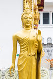 Standing Thai Golden Buddha statue Royalty Free Stock Photos