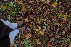 Stando nella foresta Fotografia Stock Libera da Diritti