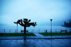 Stando nella pioggia Fotografie Stock Libere da Diritti