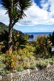 Standpunkt über Faial und dem  Penha de à guia oder Adlerfelsen, Madeira, Portugal Lizenzfreies Stockfoto