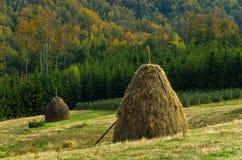 Standpunkt auf einer Landschaft des Bergs Bobija, der Hügel, der Heuschober, der Wiesen und der bunten Bäume Stockfoto