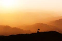 Standpunkt des hohen Winkels über Regenwald mit Schichtbergen auf Sonnenuntergangzeit lizenzfreies stockfoto