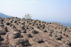 Standpunkt Laan Hin Pum an Nationalpark Phu Hin Rong Kla Stockbilder