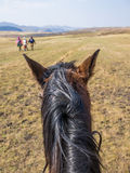 Standpunt van een hoofd van de basutoponey vanuit een perspectief van paardruiters wordt geschoten, bergen van Lesotho, Afrika da royalty-vrije stock foto's