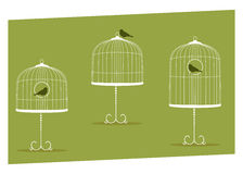 Stands cages Royalty Free Stock Photos