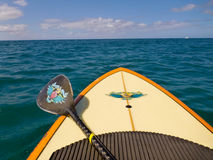 Standup paddle board. A stand up paddle boarder's view from surfboard in water Stock Photography