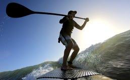 Standup skovelbräde som surfar en våg på soluppgång Royaltyfri Bild