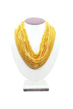 Standy guld- halsband royaltyfria foton