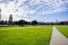 Stanford Oval in front of the Main Quad royalty free stock images