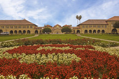 Stanford Quadrangle from the Rose S Royalty Free Stock Photo