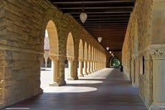 Stanford-universitet Fotografering för Bildbyråer