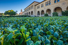 Stanford University. Architecture of public places of the Stanford University, California stock photo