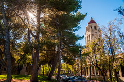 Stanford University Campus in Palo Alto, Californië royalty-vrije stock afbeelding