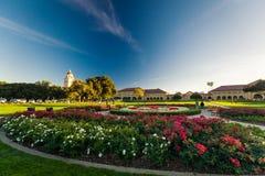 Stanford University et parc Photographie stock