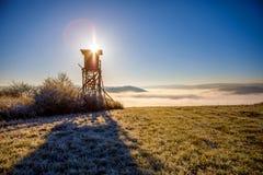 Stange bei Sonnenaufgang Stockfotografie