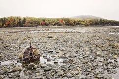 Stangen-Insel im Stangen-Hafen, Maine Stockbild