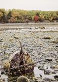 Stangen-Insel im Stangen-Hafen, Maine Lizenzfreie Stockbilder