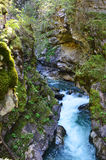 Stanghe vattenfall, Trentino Alto Adige Italy Royaltyfri Bild