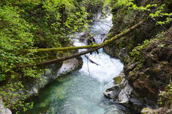 Stanghe-Wasserfall, Trentino Alto Adige, Italien Lizenzfreie Stockbilder