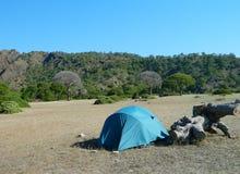 stanging在狂放野营的帐篷 库存照片