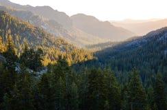 Stanislaus National Forest Fotografía de archivo