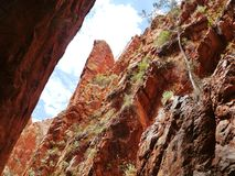 Stanley chasm. In the West McDonnell ranges in the Northern Territory in Australia Stock Photos