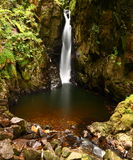 Stanley Ghyll Force Arkivfoto
