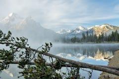 Stanley Lake Idaho med dimma och träd Arkivfoto