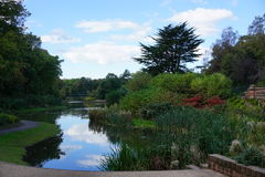 Stanley Park Foto de Stock Royalty Free