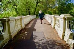 Lady on the bridge royalty free stock photography