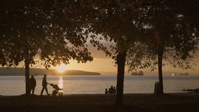 Stanley Park Sunset, Vancouver 4K UHD. An autumn walk in Stanley Park at sunset, Vancouver, Canada. 4K. UHD stock video