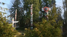 Stanley Park Totems Camera Move, Vancouver stock video footage