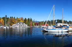 Stanley Park in Vancouver Royalty Free Stock Images