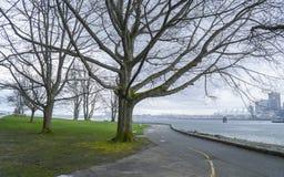 Stanley Park Vancouver med en härlig sikt över staden - VANCOUVER - KANADA - APRIL 12, 2017 Arkivbild