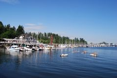 Stanley Park Waterfront. In Vancouver, Canada royalty free stock image