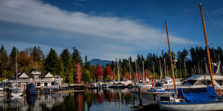 Stanley parkerar Vancouver F. KR. Kanada Royaltyfri Fotografi