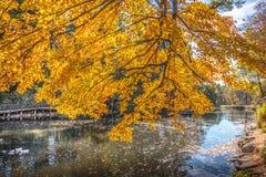 Σκηνή φύσης φθινοπώρου με την όμορφη λίμνη στοκ φωτογραφίες με δικαίωμα ελεύθερης χρήσης