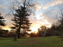 Stanmer Park. Sunrise over Stanmer Park Brighton Royalty Free Stock Photo