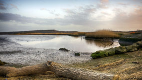 Stanpit Marsh Stock Photos