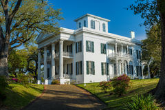 Stanton hall mansion, natchez, mississippi stock images