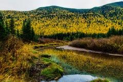 Stanton zatoczki jesieni kolory zdjęcie stock