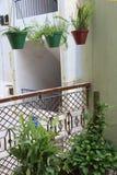 stanu gdzie ma wbić roślin Zdjęcie Stock