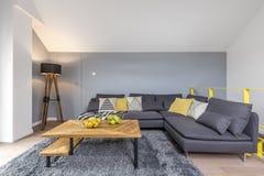 Stanza con il sofà d'angolo grigio Fotografia Stock