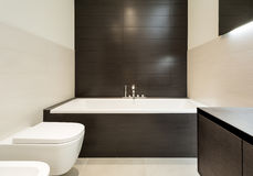 Stanza da bagno comoda Fotografia Stock