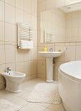 Stanza da bagno con gli accessori Fotografia Stock