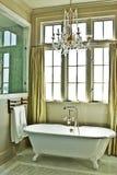 Stanza da bagno elegante con la vasca immagine stock libera da diritti